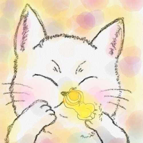 亀サンキューのプロフィール画像