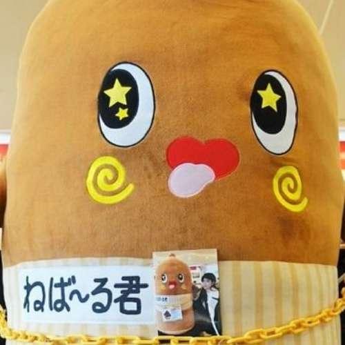 komori カズのプロフィール画像