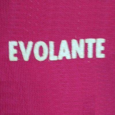 evolanteのプロフィール画像