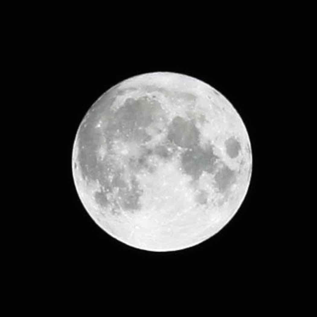 月が綺麗のプロフィール画像